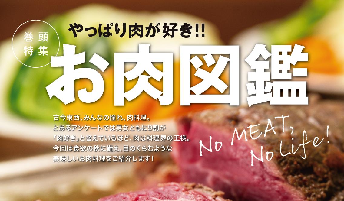 やつしろぷれす2018.9月号 肉特集